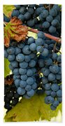 Marechal Foch Grapes Bath Towel