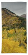 Mount Timpanogos Fall Colors Bath Towel