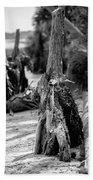 Nature Scenes Around Hunting Island South Carolina Bath Towel