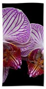 2 Orchids Hand Towel