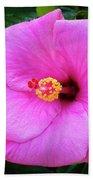 Pink Hibiscus Bath Towel