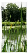 Pond At Beaver Island State Park In New York Bath Towel