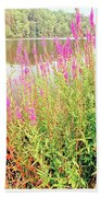 Pond In The Bershire Mountains, Massachusetts Bath Towel