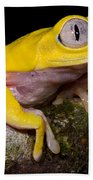 Red-eyed Treefrog, Xanthic Form Bath Towel