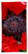 Red Poppy Photograph Bath Towel