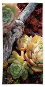 Succulents Bath Towel