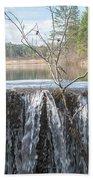 Vermont Swamp Bath Towel