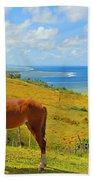 Viti Levu, Coral Coast Bath Towel