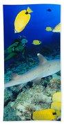 Whitetip Reef Shark Bath Towel