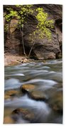 Zion National Park Narrows Hand Towel