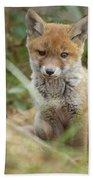 Red Fox Cub Bath Towel