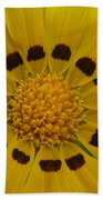 Australia - Yellow Daisy Flower Bath Towel