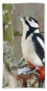 Great Spotted Woodpecker Bath Towel