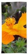 Australia - Yellow Cosmos Carpet Flower Bath Towel