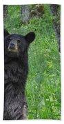 Black Bear Yearling Hand Towel