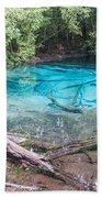 Blue Pool Bath Towel