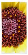 Chrysanthemum Named Polar Star Bath Towel