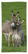 Donkey Mother And Young Bath Towel