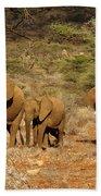 Elephant Parade Hand Towel