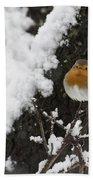 European Robin Erithacus Rubecula Bath Towel