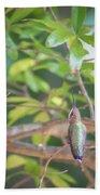 Hummingbird Found In Wild Nature On Sunny Day Bath Towel