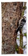 Lesser Spotted Woodpecker Bath Towel