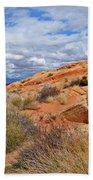 Nevada Desert Bath Towel