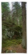 Old Forest In Kauppi Tampere Bath Towel