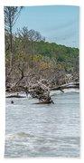 Palmetto Forest On Hunting Island Beach Bath Towel