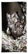 Screech Owl Bath Towel