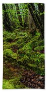 Spring Along Elk River Bath Towel