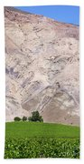Vines In The Atacama Desert Chile Bath Towel
