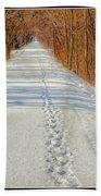 Winter On Macomb Orchard Trail Bath Towel by LeeAnn McLaneGoetz McLaneGoetzStudioLLCcom
