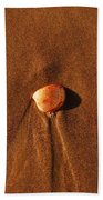 Beach Shell Hand Towel
