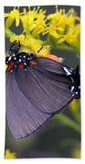 3398 - Butterfly Bath Towel