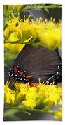 3454 - Butterfly Bath Towel
