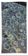 3da5793-dc Lichen On Rock Bath Towel