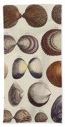 Aquatic Animals - Seafood - Shells - Mussels Hand Towel