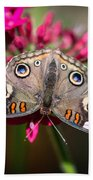 Common Buckeye Junonia Coenia Bath Towel
