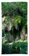 Gormon Falls Colorado Bend State Park.  Hand Towel