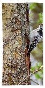 Lesser Spotted Woodpecker Bath Towel