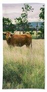 Longhorn Cow In The Paddock Bath Towel