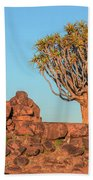 Quiver Tree Forest - Namibia Bath Towel