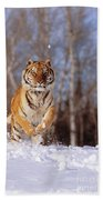 Siberian Tiger Bath Towel