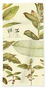 Vintage Botanical Illustration Bath Towel