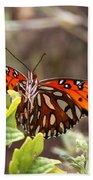 4529 - Butterfly Bath Towel