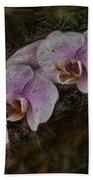 5 Dollar Orchid Bath Towel