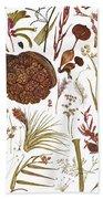 Herbarium Specimen Bath Towel