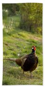 mr Pheasant Bath Towel