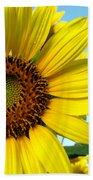 Sunflower Series Hand Towel